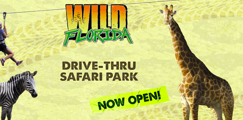 Wild Florida drive thru safari park