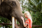 Do we really need to ban animals in tourist spots? An NGO thinks so
