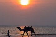 Gujarat to launch tourism circuit in Saurashtra