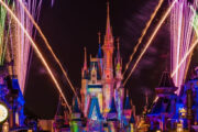 Walt Disney Florida reopens to visitors