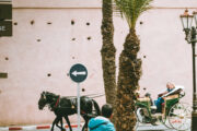 Morocco's carriage horses starve as tourism suffers due to pandemic