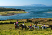 """Irish tourism feels """"threatened"""" by American travellers"""