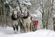 The top 7 winter holiday destinations in Poland preferred by Indian Tourists