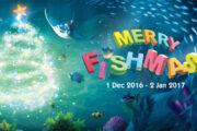 Merry Fishmas –Santa's surprise visit to Thai Aquarium