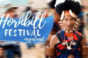 Nagaland's Virtual Hornbill Festival kicked off on 01st December