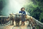 Tourism Malaysia Teams up with OPPO for Photography Contest