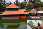 Kerala's only lake temple,  guarded by a vegetarian crocodile with unknown origin