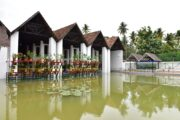 Explore the biodiversity of Kerala at the KSBB Museum