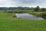 Madayipara- The Unheard Laterite Hillock of Kerala