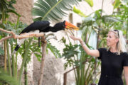 Dubai Safari Park closed; again will open in September