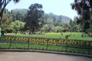 Tourist centers open in Ooty; Admission for those from Kerala