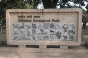 The Delhi Zoo has reopened after a 105-day covid break