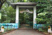 Mangalavanam Bird Sanctuary; A congregation of communally breeding birds